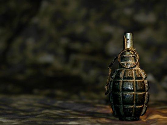 На Рахівщині у лісі знайдено старі гранати