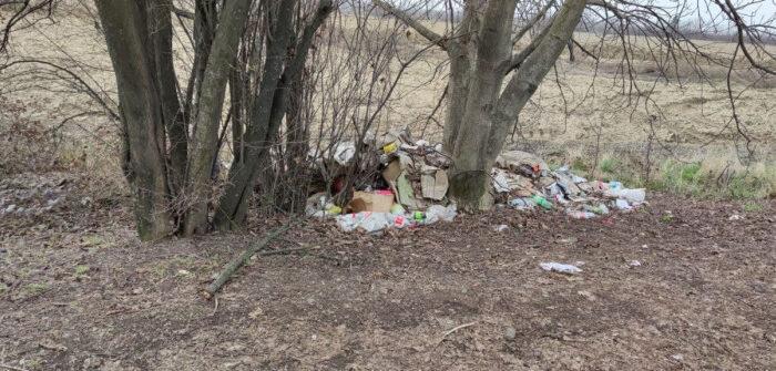 Муніципали штрафують мукачівців за розкидування сміття (ФОТО)