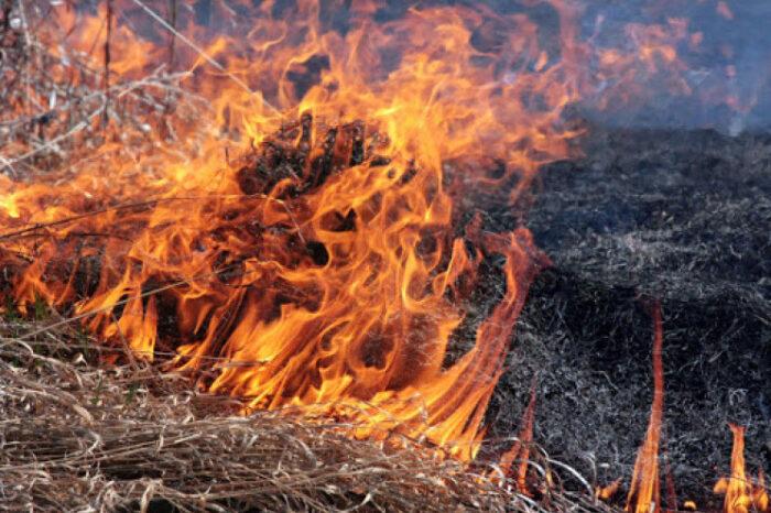 На Мукачівщині жінка потрапила до реанімації, отримавши опіки при спалюванні трави