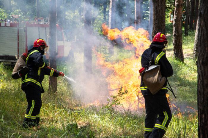 На Закарпатті пройшли масштабні навчання рятувальників