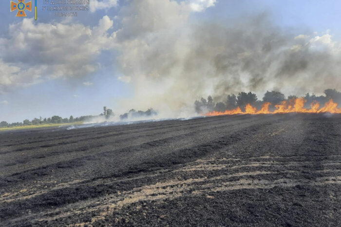Пшеничне поле горіло на Ужгородщині